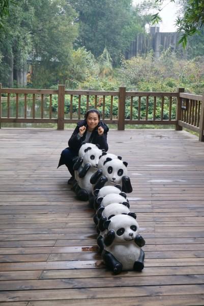 不过这次没有看到刚出生的小熊猫,估计是都已经长大了一点了,放在了