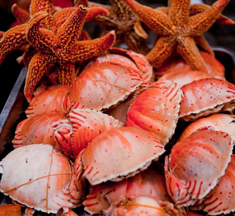 青岛海鲜去哪儿吃?
