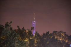 广州---珠江之夜(254)