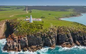 【袋鼠岛图片】老司机的南澳攻略之袋鼠岛