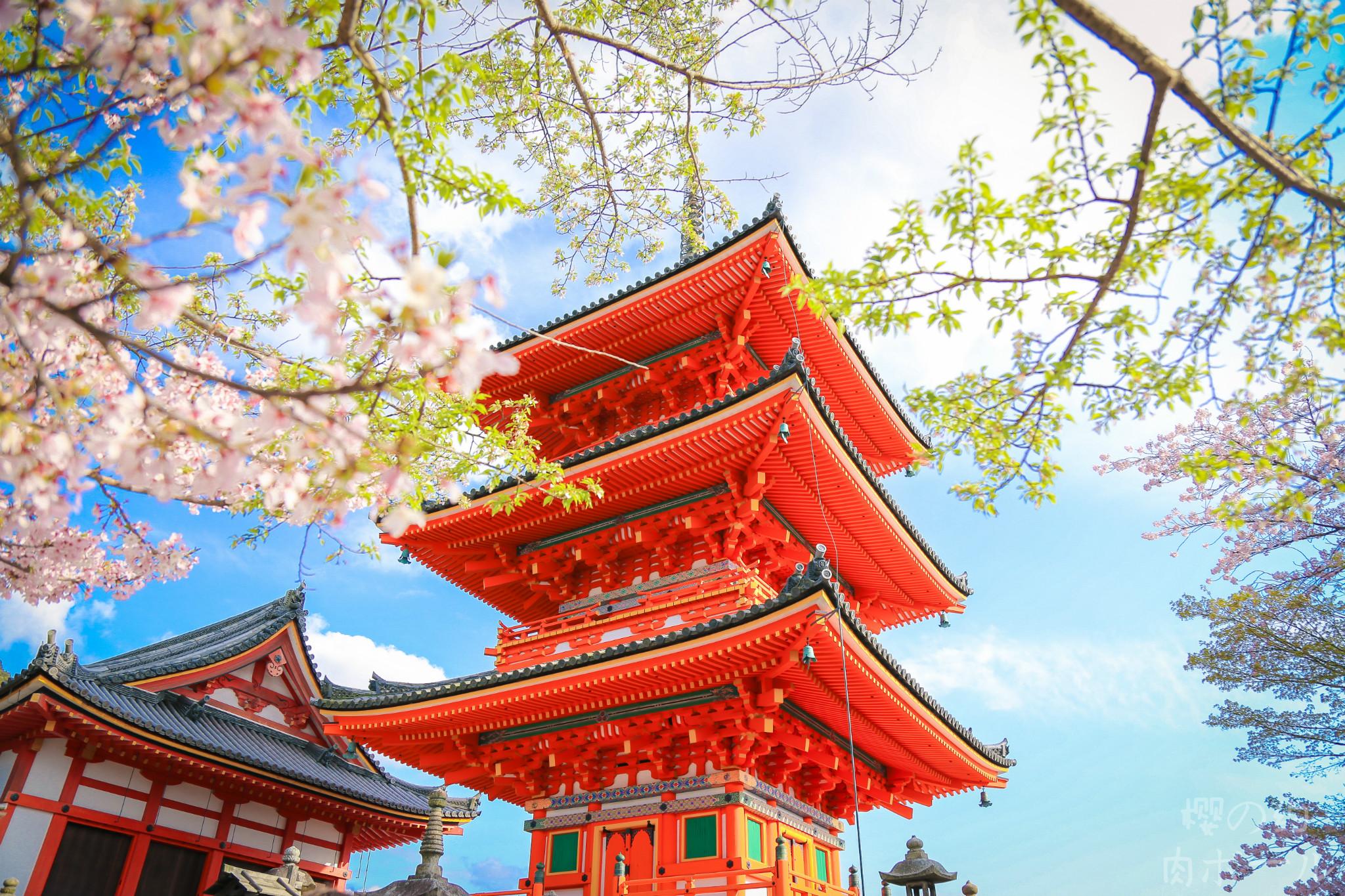【日本景点图片】清水寺
