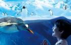 【官方代理】曼谷 暹罗海洋世界/海洋馆/海底世界/海洋公园门票(扫码换票+现场可订+即买即用+无需等待+24小时自动出票·亲子行程)