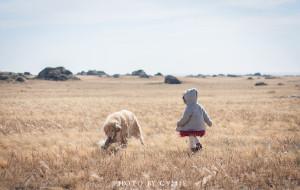 【锡林郭勒图片】拖娃带狗 | 看草原火山石林恐龙,吃苏尼特羊,游魔幻小城,闯无人区,20个月宝宝的世界大有可为