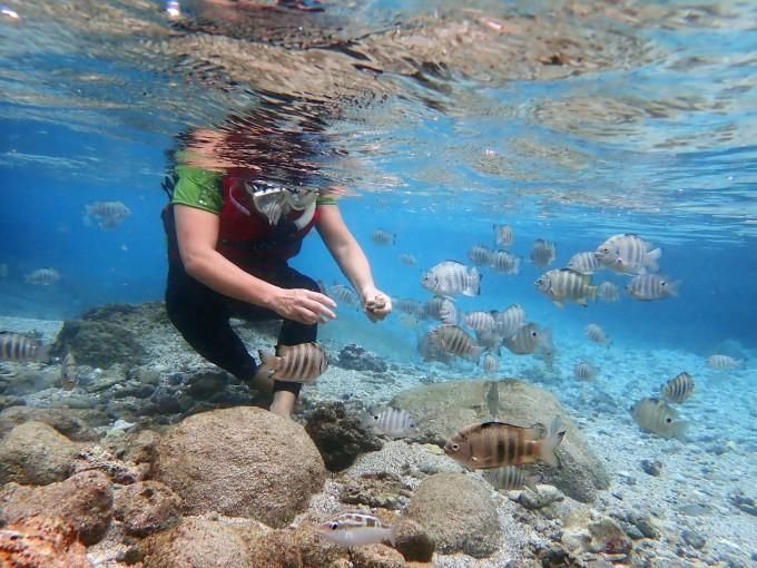 带上老妈去旅行—— 塞班岛跳伞,蓝洞潜水寻梦8日游