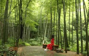 【溧阳图片】4周年纪念小庆,相约在竹海——南山竹海&御水温泉