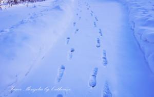 【乌兰浩特图片】内蒙古·初来乍到的大东北【乌兰浩特&阿尔山】