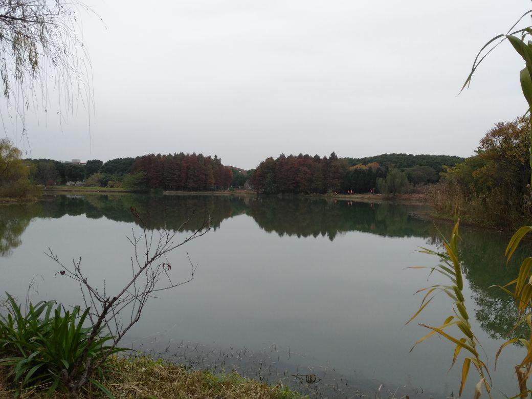 天福国家湿地公园(TIANFU WETLANDS)