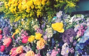 伦敦娱乐-Chelsea Flower Show