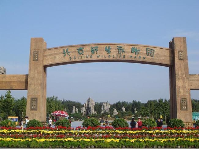 北京野生动物园门票(电子票快速入园/自驾游推荐可选自驾区车票/亲子