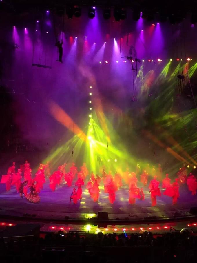 广州长隆野生动物园大马戏,珠海长隆海洋馆各种表演,萌娃闹翻天