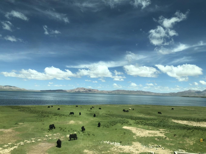 西藏--阿里,與您相伴的時光 12