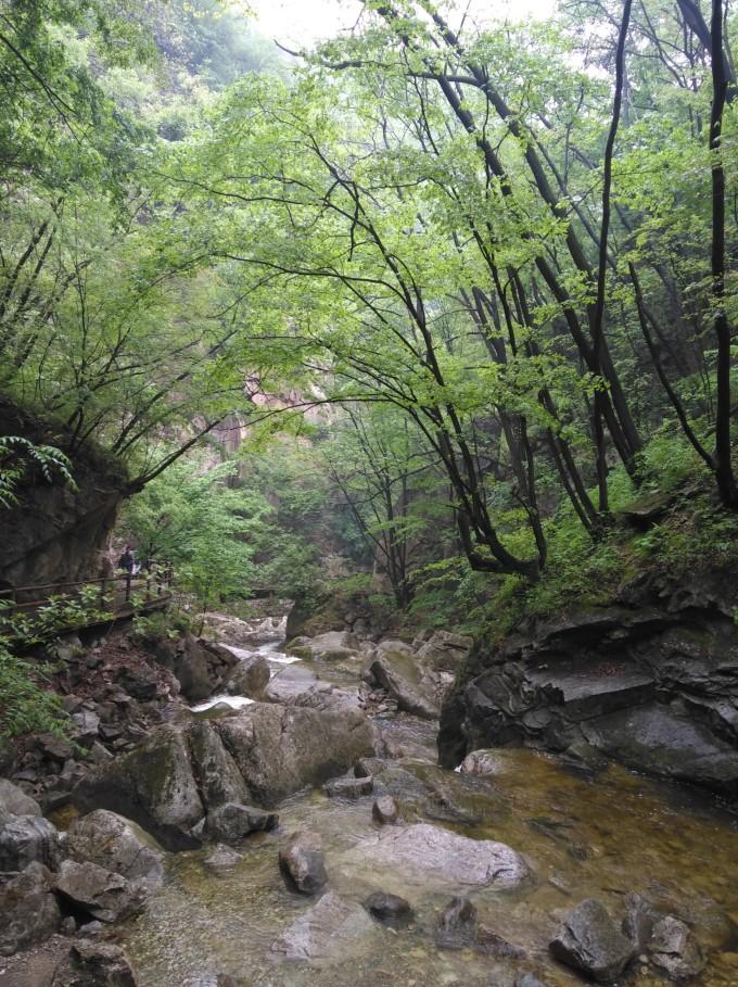 太平山国家森林公园