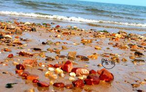 【日照图片】春风十里~记录喧嚣以前一片安静的海
