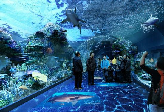 成都海滨城浩海立方海洋馆单人套票