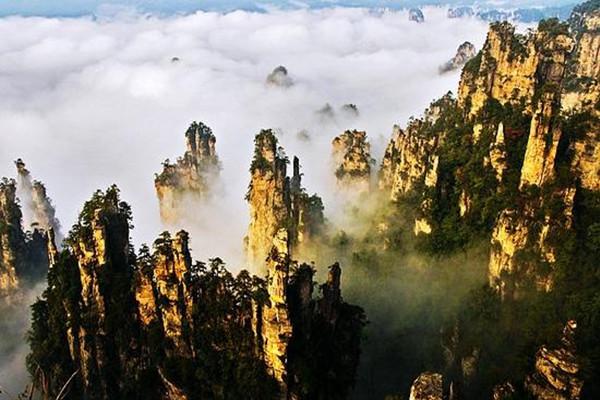 张家界森林公园门票 国家5a景区