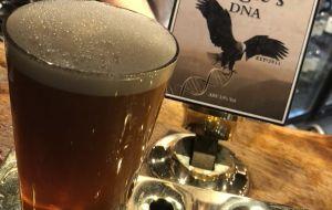 英國娛樂-老鷹酒吧