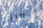 芬兰 罗瓦涅米 滑雪大冒险 半日游/一日游 舒心中文团 含专业教练指导和滑雪设备 单双板可选(高山滑雪+拉普兰冰钓体验+森林碳烤三文鱼)