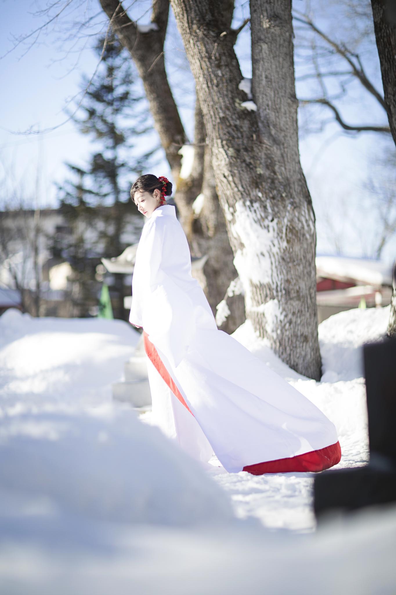 日本·北海道   十二月的晴空飛雪