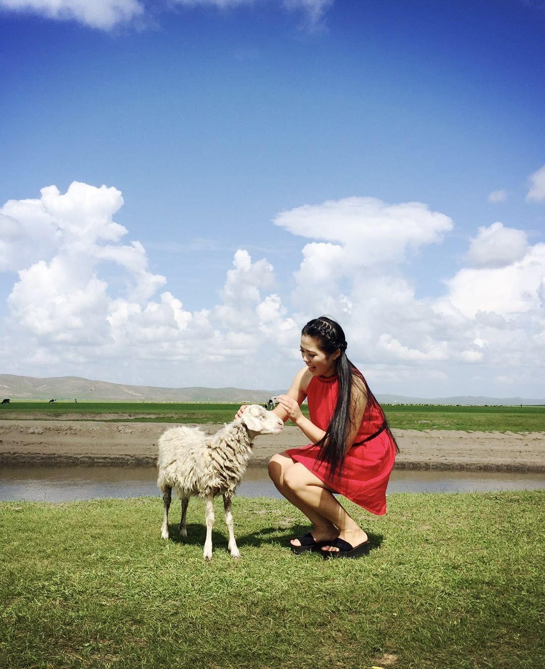 内蒙古草原自由行旅游