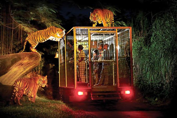 巴厘岛野生动物园(bali safari)亲子游指南