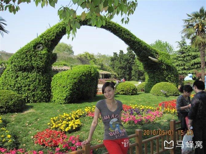 打卡上海动物园