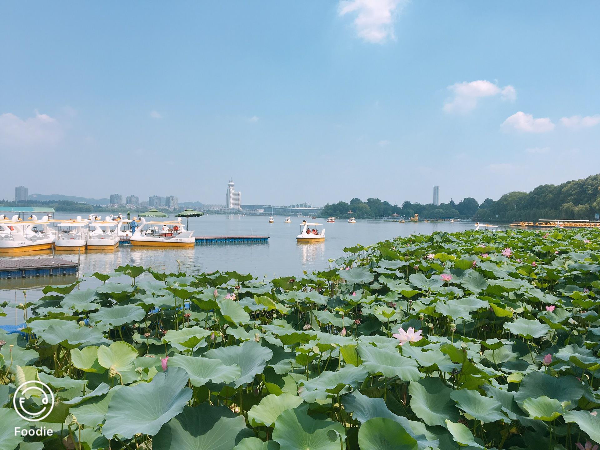 2019暑假南京游Day2-玄武湖公园-夫子庙-老门东