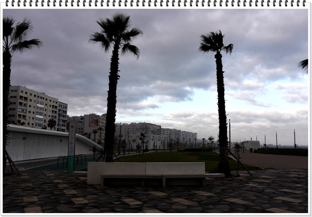 摩洛哥卡萨布兰卡 市中心附近的街景都这样