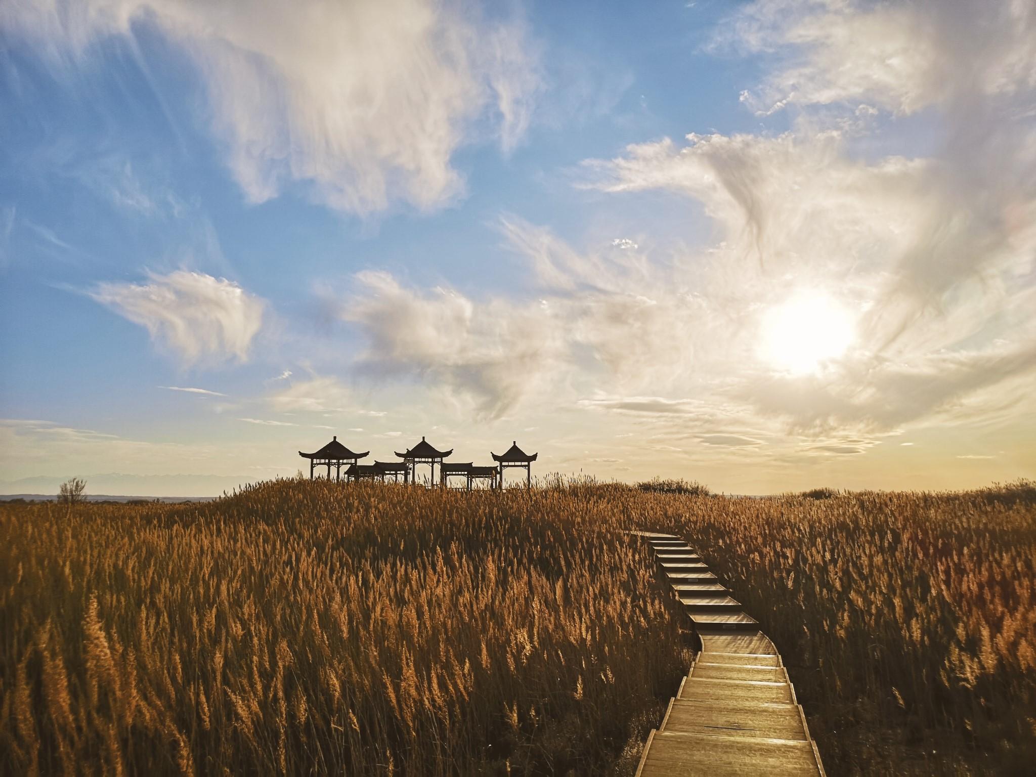 ·甘肃8日自驾之旅|寻找河西走廊之梦【后附旅行攻略】_游记