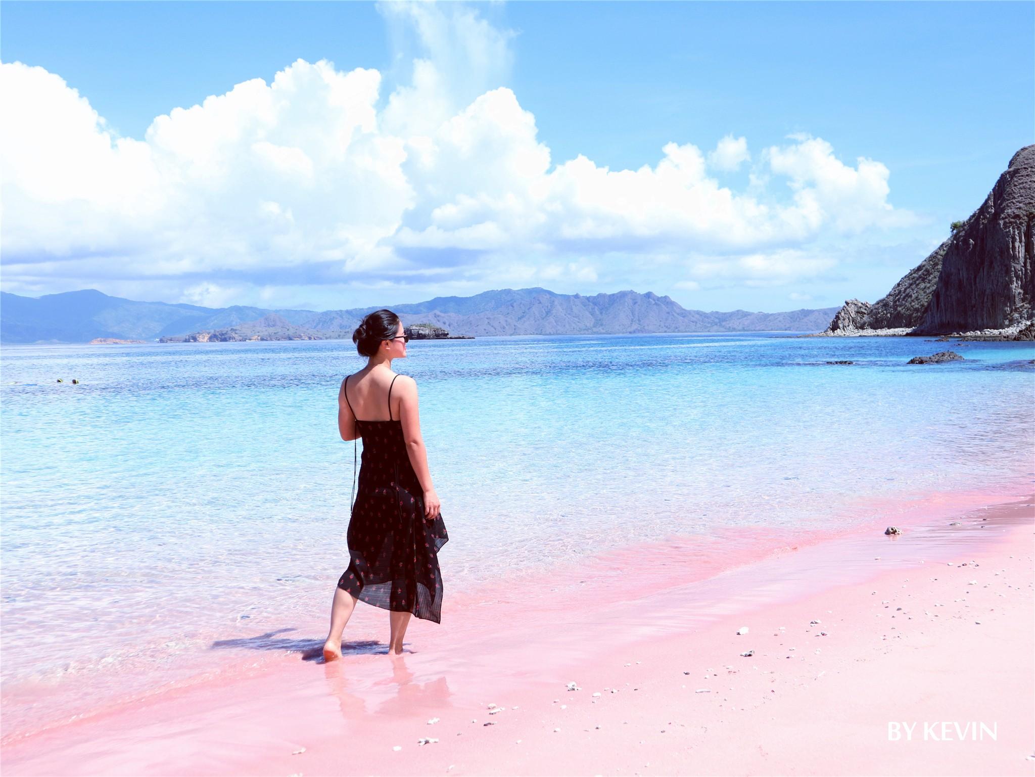 ·新冠阴影下的科莫多巴厘岛之行,世界很美,学会珍惜,少些贪婪_游记