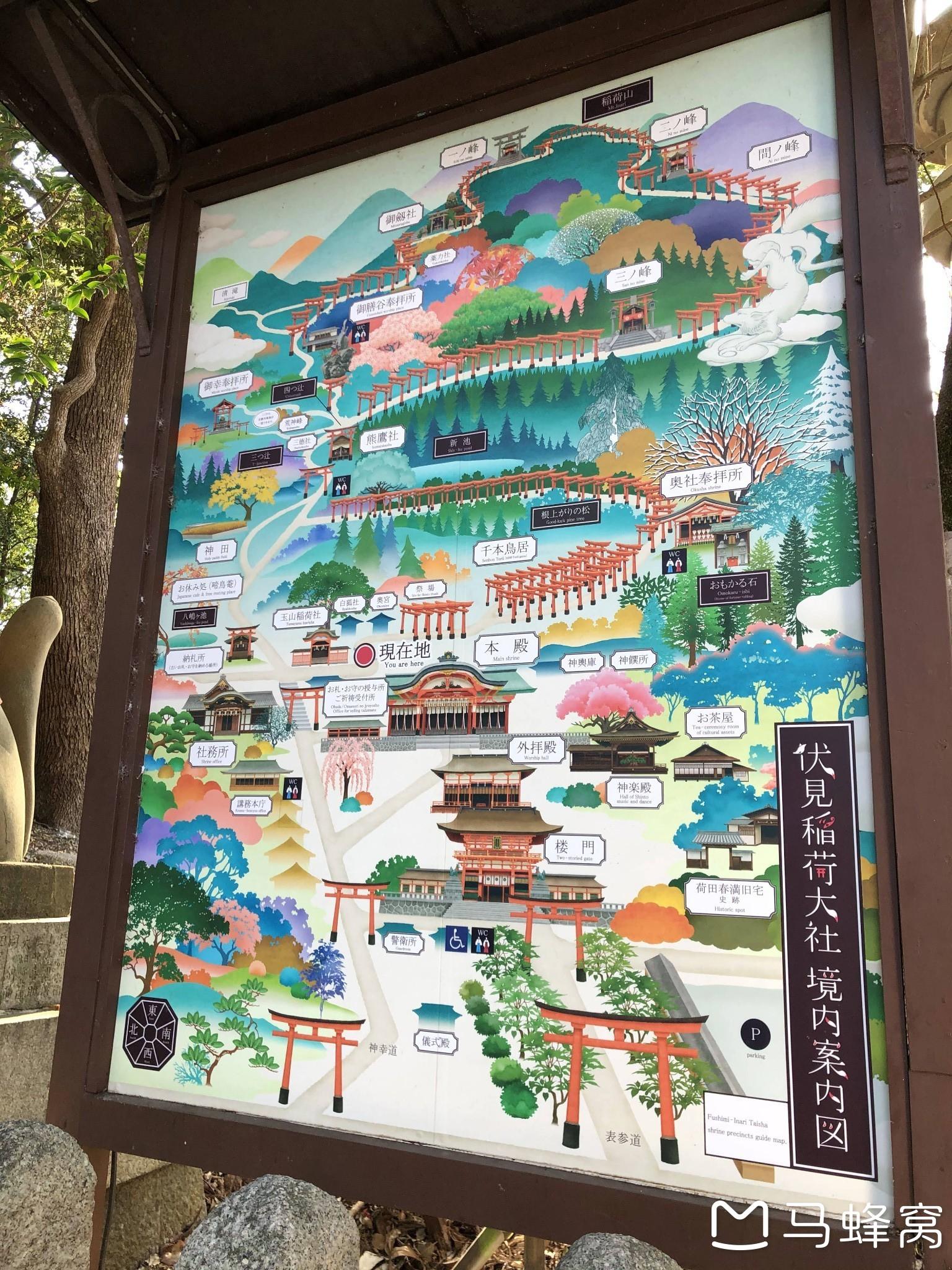 ·京都的红原来如此不同——枫叶季关西9日赏枫🍁之旅(京都篇)_游记