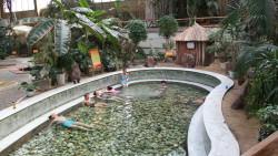 阿尔山娱乐-阿尔山温泉博物馆
