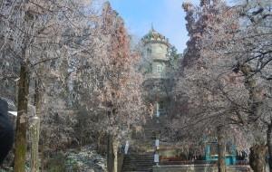 【信阳图片】美丽的雪后鸡公山仙景