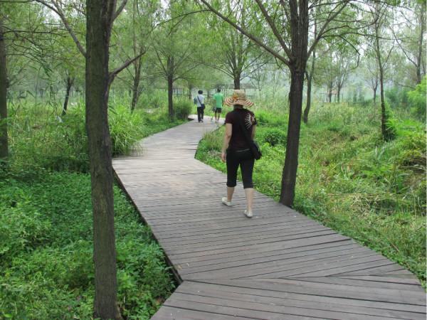 北宫森林公园门票_20120721 大美滕州 微山湖红荷湿地公园游记,微山湖旅游攻略 - 马蜂窝