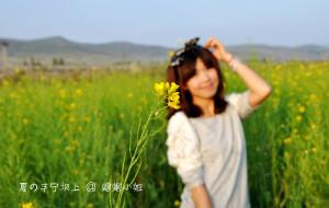 【丰宁图片】丰宁坝上,关于夏日草原的那些记忆