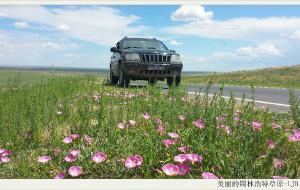 【锡林浩特图片】2013夏季北京-锡林浩特草原自驾游