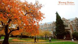 西雅图景点-华盛顿大学(University of Washington)