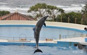 【冲绳图片】2014.2 我们的沖縄の旅(海量图文)