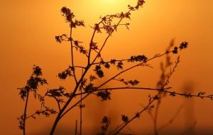 【兴安盟图片】七人七天在最不应该的季节去了最值得去的地方<塞外开荒北京至阿尔山自驾全攻略路书>(北京-达里诺尔湖-阿斯哈图石林-阿尔山国家地质公园-通辽-赤峰)完结!