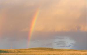 【达里诺尔湖图片】2013内蒙草原行之--赤峰、锡林郭勒