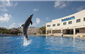 墨西哥娛樂-Dolphinaris Cancun