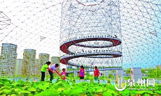 永春高垅—— 隐于城关的现代乡村公园