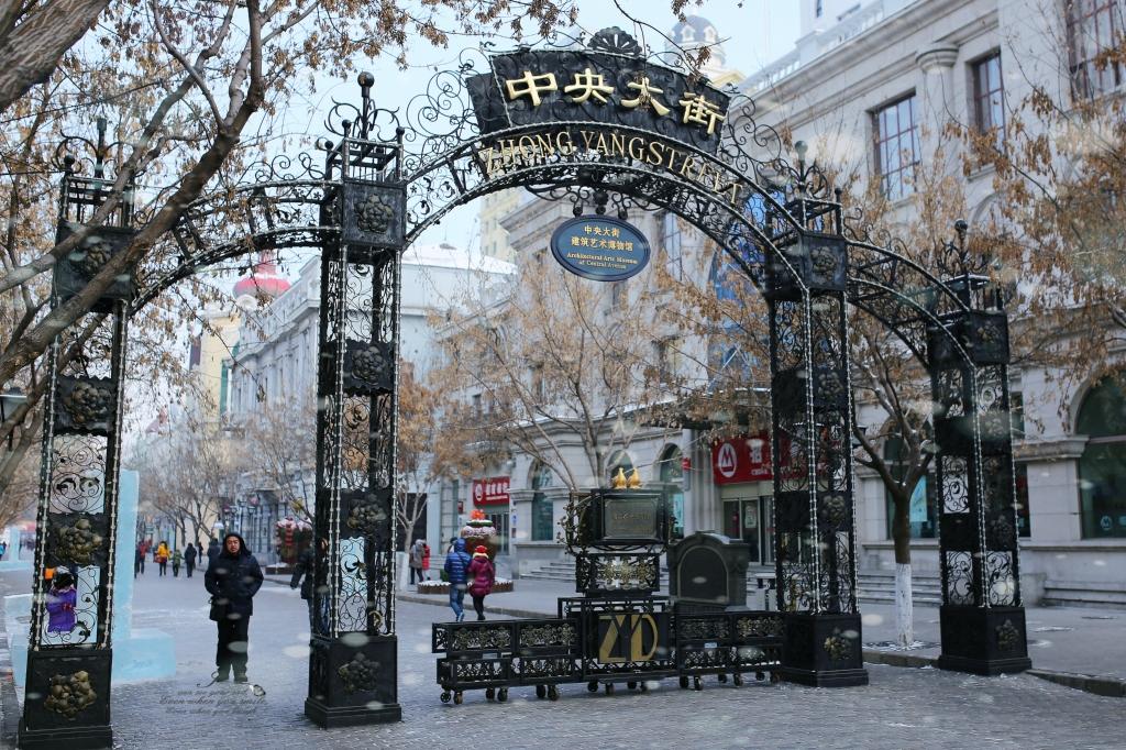 一定要来一次的冰雪之都-哈尔滨,看当地人怎么玩(内附景点介绍及美食推荐)