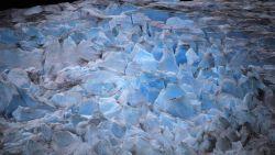 阿拉斯加景点-门登霍尔冰川(Mendenhall Glacier)