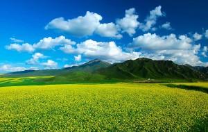 【巴里坤图片】新疆-甘肃-青海-四川-陕西-宁夏     跨越六省的休闲自驾游!