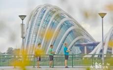 新加坡 宝藏纪念