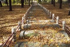 失败的旅程——齐齐哈尔国家森林公园