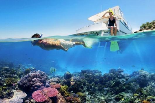凯恩斯 绿岛大堡礁一日游船 (大冒险号)