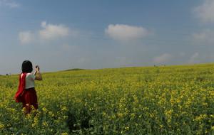 【草原天路图片】避暑行之  与草原的亲密接触