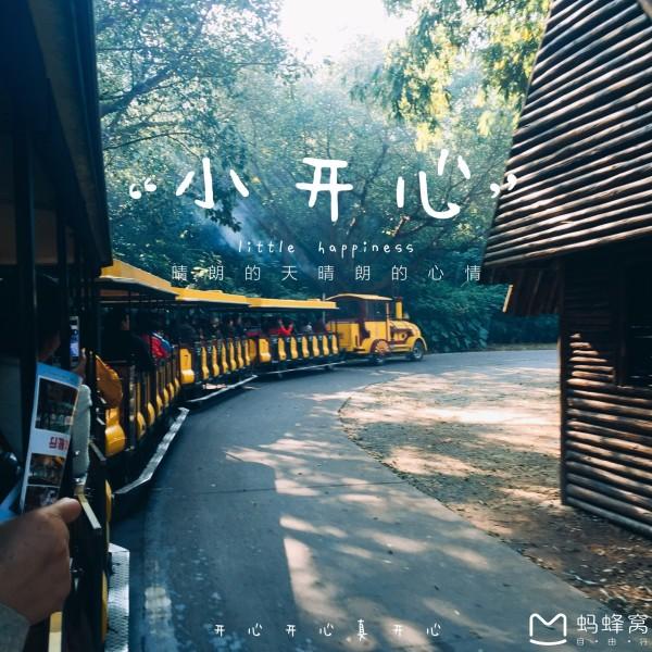 最强攻略:羊城过春节~长隆野生动物园~佛山祖