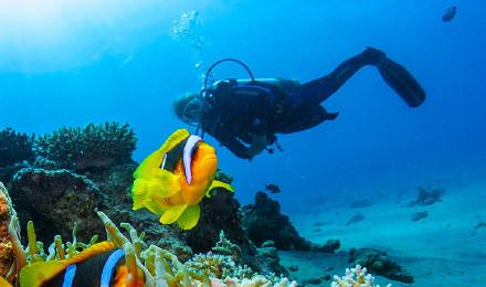 泰国普吉岛苏林岛素林岛一日游 苏林群岛 近斯米兰岛